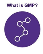 What is GMP icon