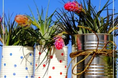 Cans being used as flower pots